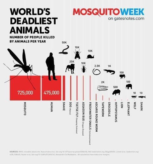 World s deadliest animals